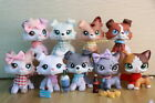 9pcs Custom lps Collie with Ear Up and lps Short hair Cat OOAK with Accessories