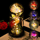 Valentines Day Beauty And The Beast Enchanted Rose In Glass Dome LED Light Lamp