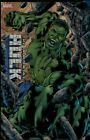 Hulk Trading Cards Guide and History 13