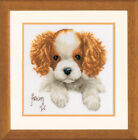 Embroidery Package Vervaco Stick Picture cross Stitch Patterns  Dog