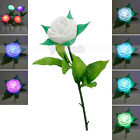 New 7 Colors Changing Romantic Rose Lamp Night Light White
