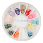 New 12 Colors 3D Tortoise Slice Nail Art Tips Decoration