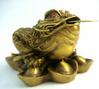 Feng Shui Brass Money Frog For Abundance & Career Luck  M5011
