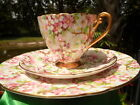 Shelley MAYTIME CHINTZ # 13386  RIPON SHAPE  FOOTED CUP, SAUCER  AND 8