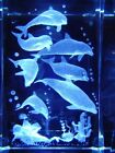 DOLPHINS 3D CRYSTAL LASER ETCHED PAPERWEIGHT