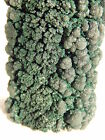A HUGE! and 100% Natural DEEP GREEN MALACHITE STALACTITE! Congo 243.4gr