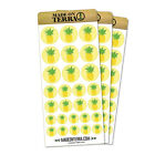 Pineapple Tropical Fruit Removable Matte Sticker Sheets Set