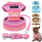 Soft Breathable Mesh Chest Plate Dog Harness and Leash Set for Chihuahua Teddy