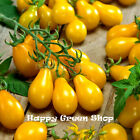 TOMATO - YELLOW PEAR - Cherry bell - 140 SEEDS
