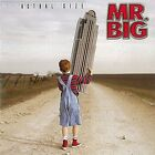 Actual Size Mr.Big CD