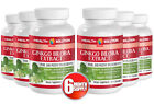 Potent Anti Inflammation Caps Ginkgo Biloba Extract 120mg Ginkgo Bonsai 6B