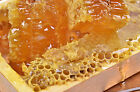 Wild Mountain Honey Soap Candle Making Fragrance Oil 1 16 Ounce Free Shipping