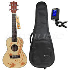 24 inch Solid Spruce concert ukulele Hawaii guitar w bag and JOYO guitar tuner