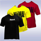 UNIVERSAL NUTRITION ICONIC ANIMAL T SHIRT YELLOW RED BLACK tee pak authentic