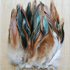 50 Pcs NATURAL ROOSTER Feathers Plumage 3 6 Tail Feathers Halloween Costume