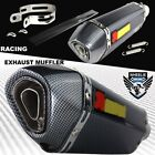 1 1 4 Rolled Carbon Look Tip Motorcycle 15 2 Performance Exhaust Muffler Kit