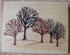 RUBBER STAMPEDE Rubber Stamp WINTER WOODS A2430F