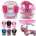 Small Dog Harness and Leash set Soft Harness Vest Lead for Puppy Chihuahua S XL