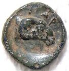 EXTREMELY RARE GARGARA, TROAS APOLLO / RAM AFTER 350 BC AUTHENTIC ANCIENT GREEK