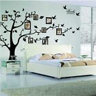 Large Family Tree Wall Decal Peel  stick vinyl sheet easy to install  appl