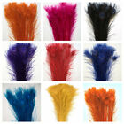 BLEACHED PEACOCK TAILS Feathers 30 40 Many Colors 10 200 Pcs Halloween Party
