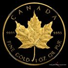 1989 Canada Proof Gold 1 oz Maple Leaf (Very Rare) $50 - NGC PF 69 Ultra Cameo