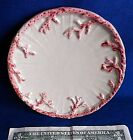 Bread & Butter Plate Fitz and Floyd Oceana 5 5/8