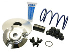 Polini Performance Variator Kit for Vespa GTS and Piaggio 200 300cc Aprilia