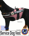 SERVICE DOG PKG Vest + ADA Card + Dog Tag Walkabout by LuvDoggy
