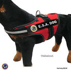 ESA DOG PKG Vest + ADA Card + Dog Tag Walkabout by LuvDoggy