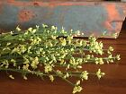 Set/3 Primitive Country Cottage Farmhouse Spring Mixed Gypsophila Floral Bundles
