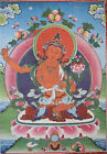 Tibetan Buddhist Thanka Wall Hanging Red Tara