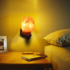 Natural Shaped Salt Rock Night Light Hand Carved Crystal Wall Lamp New