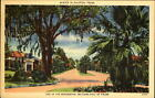 Residential section of Houston Texas TX in winter palm trees mailed 1940