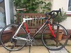Wilier Triestina Mortirolo Campagnolo Veloce Size L 58cm Carbon Road Racing Bike