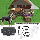 Underground Electric Dog Fence System Water Resistant w 2 Shock Collars