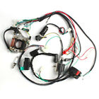 Complete Electrics ATV QUAD 50cc 70cc 110cc 125cc Wire Harness Coil CDI Assembly