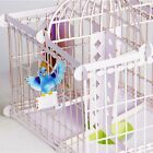3D Handmade Pop Up Bird Cage Greeting Happy Birthday Invitations Card DJ8Z