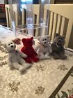 beanie babies rare retired Set Of Four Hamley , William , Shooting Star (Two)