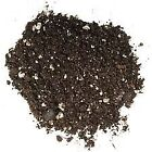 Willow Bonsai Tree Soil Fast Growth Blend 100 All Natural