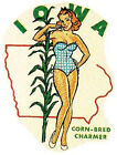 IOWA Pin Up Girl IA Vintage Looking 50s Travel Decal sticker