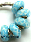 Wholesale Silver Lampwork Murano Glass Beads Fit European Charm Bracelet TJ2576