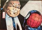 5 Amazing Spider-Man Trading Card Sets 13