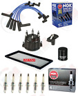 Ignition Tune Up Kit with NGK Plug  Wires for 1997 1999 JEEP Wrangler TJ 40L