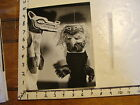 Vintage MARIONETTE PHOTO abstract berkely puppets NATIVE CLOSE UP so cool