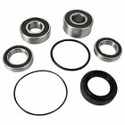 Pivot Works Rear Wheel Bearing Kit for Honda Street Motorcycles