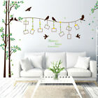 Family Tree Bird Photo Frame Decal Wall Sticker Art Home Bedroom Decor Removable