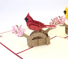 New Greeting Card Parrot 3D PopUp Paper Cut Postcard Birthday Invitation Card 78