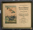 Very old German insect book title page and hand colored drawing 1796 framed