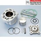 109.0016 Set Polini Derbi Aprilia Rx-Rs LC D.50 2006 Engine D50B